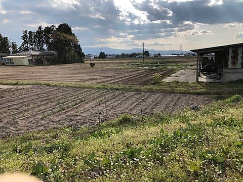 佐々木農場